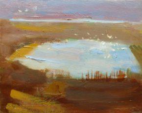 Seabirds on the Owenabue estuary, oil on canvas, 26 x 32cm, 2016